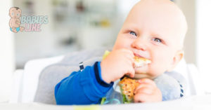 baby / toddler eating solids